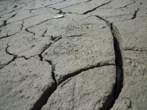 sausra,dehidratuotas,įtrūkimai,sausas,molio dirvožemis