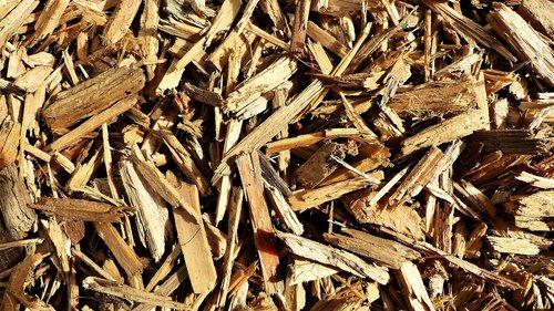 sausas, daug, žolė, pobūdį, drožlės, mediena, tekstūros medienos, medienos medžiagos, amžiaus medienos