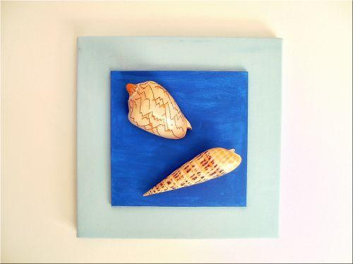 du, lukštas, kriauklės, jūra, nuotrauka, mėlynas, atmintis, grožis, gamta, du korpusai