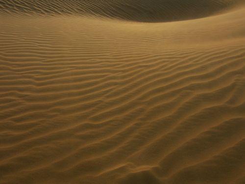 kopos,kopos,dykuma,smėlio kopos,smėlis,vėjo modeliai,dubai,uae,u e e,sahara