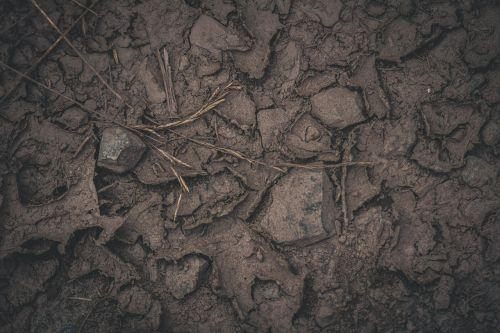 žemė,žemė,ruda,gamta,įtrūkimai,miško paklotė,sausra,purvas,natūralus grindų danga,sausas,nyksta žemė,pagrindinė žemė