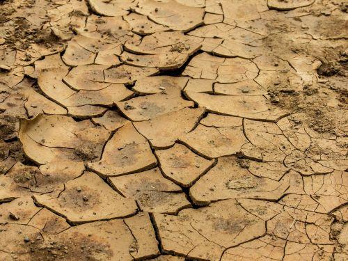žemė,molis,sausas,sausas molis,krekas,dykuma