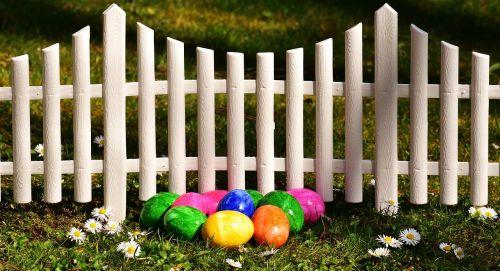Velykos,Velykų kiaušiniai,sodas,tvora,Velykinis dekoras,kiaušinis,spalvinga,linksmų Velykų,Velykų kiaušinių tapyba,spalvos,spalva,pavasaris,dažytas kiaušinis,apdaila,spalvotas kiaušinis,Velykos tema,Velykinis sveikinimas