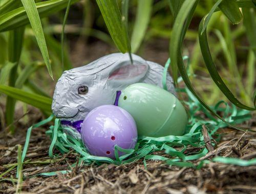 Velykos,kiaušiniai,šventė,pavasaris,spalvinga,apdaila,šventė,sezonas,žolė,triušis,zuikis