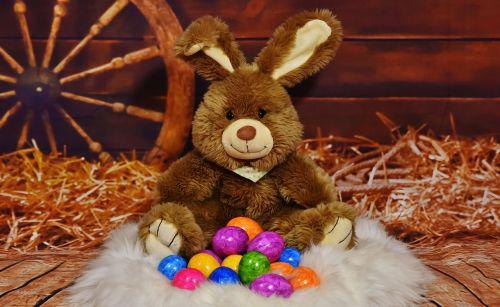 Velyku Triusis,kiaušinis,spalvos,spalvinga,Velykos,Velykų kiaušiniai,Velykų lizdas,linksmų Velykų,spalvingi kiaušiniai,virti kiaušiniai,spalvoti kiaušiniai,dažyti lengvi kiaušiniai