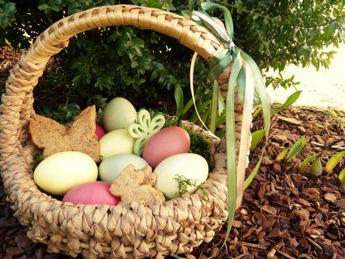 Velykų lizdas,Velykų kiaušiniai,spalvos,osterkorb,sodas,ieškojau Velykų krepšelį,slapukai,drugeliai,triušis,Velyku Triusis,šeima,Velykos,vaikai,pavasaris,Velykinis sveikinimas,gamta,žinoma,bio,sveikas,kiaušinis
