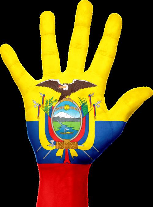 ecuador,vėliava,ranka,nacionalinis,pirštai,patriotinis,patriotizmas,į pietus,amerikietis,amerikietis,Ekvadoras