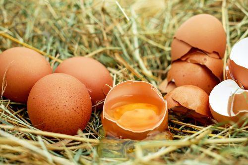 kiaušinis,vištienos kiaušiniai,žaliaviniai kiaušiniai,kiaušinio plekšnė,kiaušinio trynys,bio