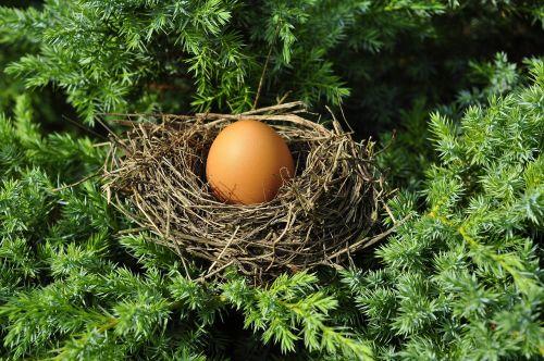 kiaušinis,lizdas,optimizavimas,matmenys,tinka,vienintelis vaikas,pakavimas,pakavimas,švelnus,parduotuvė