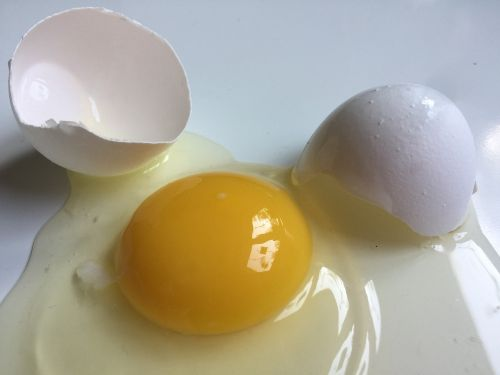 kiaušinis,supjaustytas kiaušinis,baltasis kiaušinis