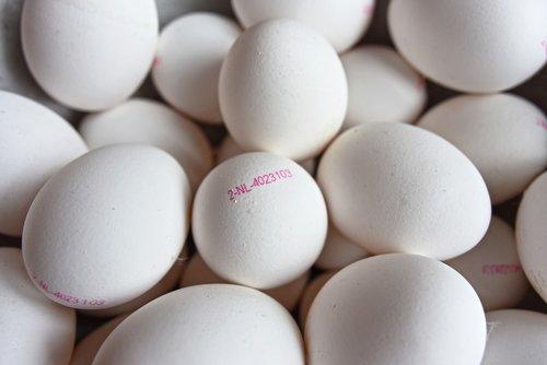 kiaušinis, kiaušinis spaudas, kiaušinis ženklas, Kiaušinio kodas, identifikavimo antspaudas, kiaušinis identifikavimas, maisto, mitybos, baltymas, gyvuliniai baltymai