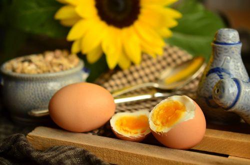 kiaušinis,trykas,virtas kiaušinis,pusryčių kiaušinis,pusryčiai,geltona,baltymai,maistas,valgyti,du,sveikas,mityba,natiurmortas,pusryčių stalas,padengtas,druskos ir pipirų