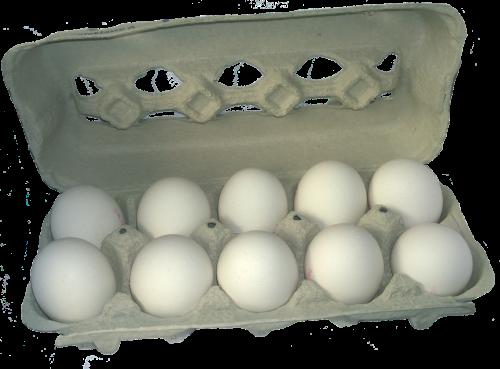 kiaušinių dėžutė,kiaušinis,maistas,kartonas