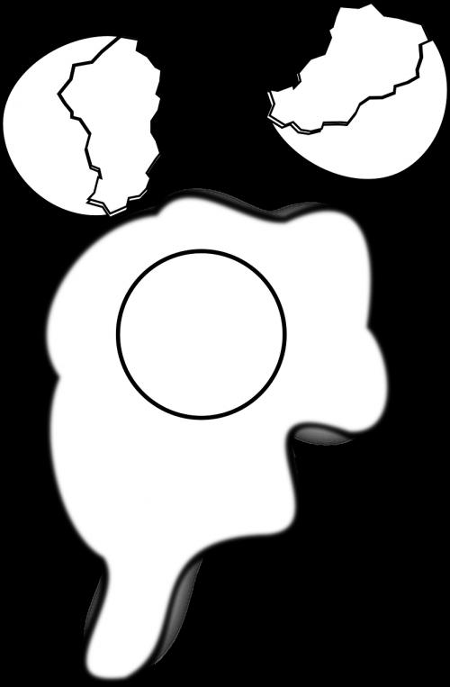 kiaušinio plekšnė,kiaušinio trynys,baltas kiaušinis,supjaustytas kiaušinis,krekenuotas kiaušinis,lukštas,trykas,pusryčiai,baltymas,nemokama vektorinė grafika