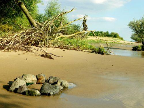 elbstrand pats,medžių šaknys,Elbe,bankas,vaikščioti paplūdimyje,gamta,vanduo,žalias,smėlis,žurnalas,upės kraštovaizdis,smėlio paplūdimys vasara,kraštovaizdis,upė,atsipalaiduoti,Atsipalaiduoti,debesys,šiaurinė Vokietija,akmenys,akmeninis ratas,židinys,potvynis,atsipalaiduoti