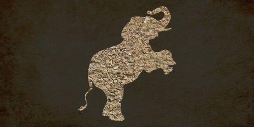 dramblys, derliaus dramblys, gyvūnas, Didelis gyvūnas, Indijos, Indija, miškas, poli, trikampio forma, 3d formos, dramblys akcijų, dramblys Wiki, dramblys vaizdas, dramblys atvaizdo, dramblys iliustracijos, dramblys vektoriaus, dramblys png, dramblys logotipas, dramblys grafika, dramblys dizainas, dramblys marškinėliai, dramblys dovana, fonas tekstūros, fonas abstraktus, background vaizdai, pixabay, fono modelis, žemos poli, trikampis, fonas, Anotacija, dizainas, tekstūros, pristatymas, brošiūra, taškų, Laisvalaikis Kamienas nuotraukos, Nemokama iliustracijos
