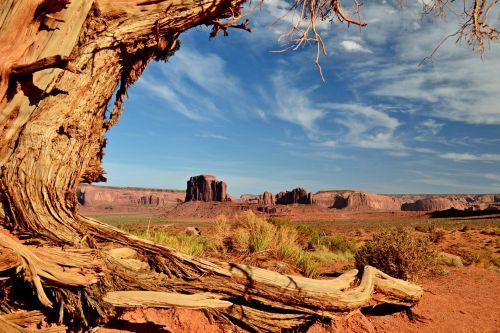 amerikietis, sausumas, Arizona, ramus, ramybė, dramblys & nbsp, erozija, eksterjeras, geologinis & nbsp, formavimas, geologija, kraštovaizdis, paminklas & nbsp, slėnis, paminklas & nbsp, slėnis & nbsp, nacionalinis & nbsp, ..., paminklas & nbsp, slėnis & nbsp, np, nacionalinis & nbsp, parkas, natūralus, gamta, Navajo, Navajo & nbsp, tribal & nbsp, parkas, dramblys bute, paminklo slėnis