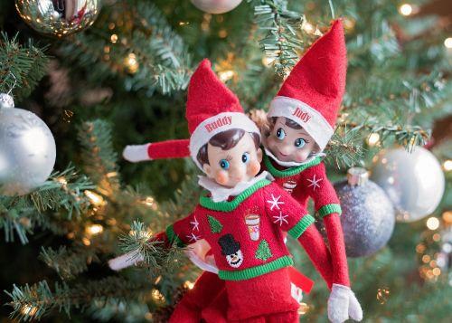 elfas ant lentynos,Kalėdos,Elfas,žiema,laimingas