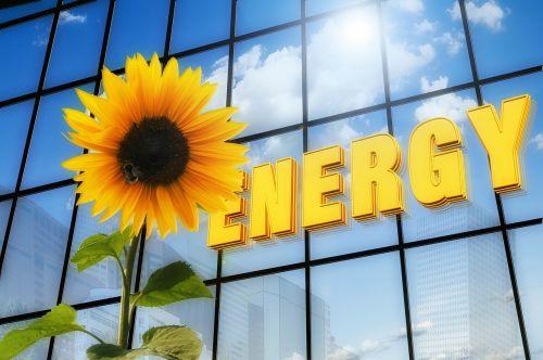energija,saulės gėlė,šrifto,saulės energija,dangoraižis,fotoelementas,saulės energija,branduolinis nutraukimas,geltona,elektros energijos paklausa,elektros gamyba,saulės elementai,saulės spindulys,dabartinis,gyvūnas,vabzdys,gėlė,flora,žiedas,žydėti,debesys,veidrodis,dangus,atsinaujinanti,elektra,alternatyva,energijos gamyba,gamta,saulės technologijos