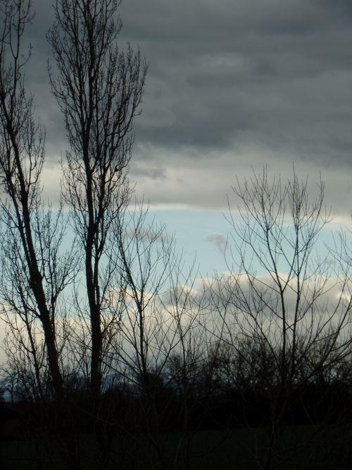 dangus, debesys, medžiai, Stark & nbsp, medžiai, vakaras, lapuočių & nbsp, medžiai, plikas & nbsp, medžiai, siluetas & nbsp, medžiai, vakarinis dangus