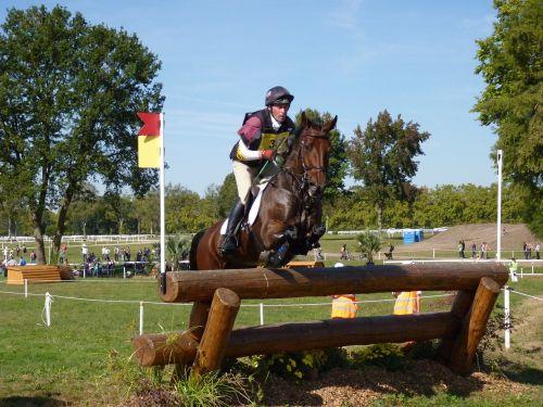 arklys,įvykis,kirsti,Jodinėjimas arkliu,konkursas,užbaigti,šokinėti,Sportas,gyvūnai