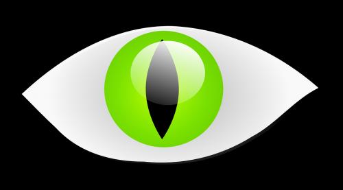 akis,ropliai,katės akis,katės akis,katė,žalias,iris,nemokama vektorinė grafika