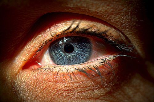 akis,mėlynas,blakstienos,juoda akis,vaizdas,Uždaryti,žmogaus akis,moterų akys