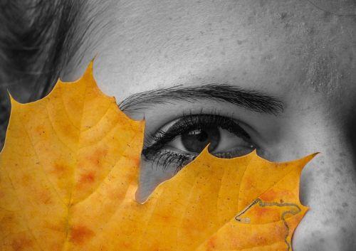 akis,lakštas,ruduo