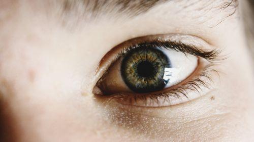 akys,žalias,ruda,vaikas,blakstienos,akių blakstienos,jaunas,lazdynas,žalios akys,rudos akys,rudos akys,freckle,veidas,oda,mergaitės,berniukai,žmonės,asmuo,žiūri,žvilgsnis,žmogus,kaukazo,Patinas,Moteris,vaikai