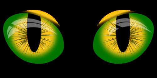 akių vektorius,Inkscape akys,akys,katės akys,piešti akis,nemokama vektorinė grafika