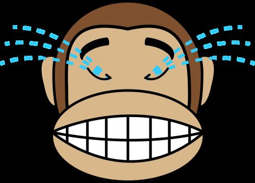 veidas,juokiasi,beždžionė,m sandbox,ašaros,nemokama vektorinė grafika