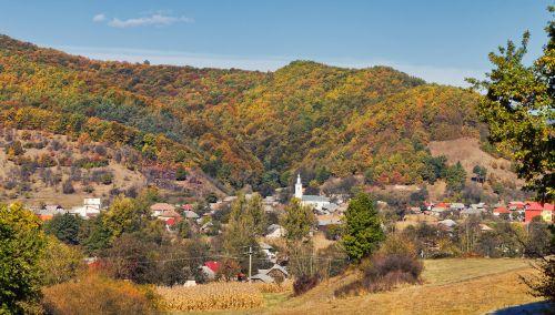 kritimas,kraštovaizdis,gamta,ruduo,miškas,lauke,parkas,vaizdingas,lapija,geltona,natūralus,krito medžiai,miško peizažas,saulės šviesa,sezonas,gamtos kraštovaizdis,rudens kraštovaizdis,medis,peizažas,spalvinga,kaimas,saulėlydis,lauke,aplinka,peizažai,gražus,raudona,saulėlydis,grazus krastovaizdis,slėnis,romanija,salaj