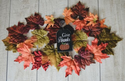 kritimas,kritimo sezonas,kritimo piktogramos,kritimo spalvos,ruduo,lapai,rudens lapai,padėka,dėkingas,dėkingumas,iš viršaus,spalvinga