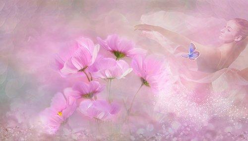 fantazija, gėlės, švelnus, šokėja, pavasaris