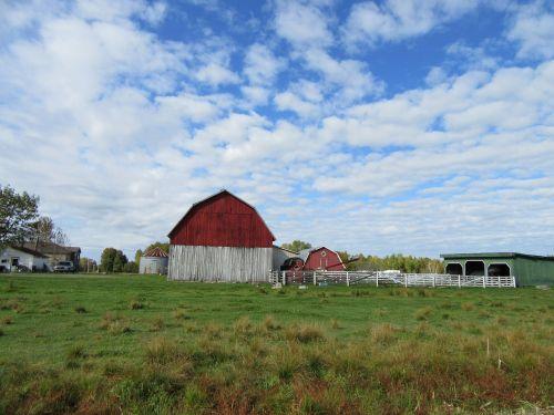 ūkis,Šalis,kaimas,ganykla,laukas,ištemptas,medinis,žemės ūkio paskirties žemė,struktūra,žolė,raudonasis svirnas
