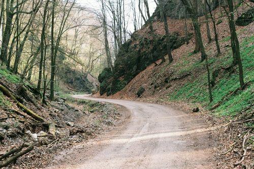ūkio kelias,kaimo kelias,lauko kelias,šalies juosta,parochialinis kelias,parapijos kelias,kaimo keliukas,kelias,miškas,purvo kelias,gamta,medžiai,žolė,filialai,miškai,lauke,takas,kelias,purvas,kalvos,akmenys