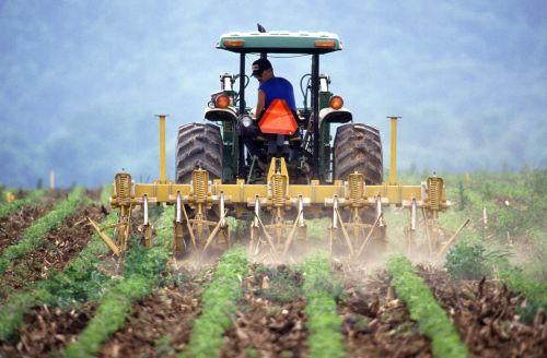Žemdirbystė, ūkininkas, ūkininkavimas, darbas, pasėlių, augalai, žemė, purvas, darbo, piktžolės, kontrolė, viešasis & nbsp, domenas, usda, tapetai, fonas, žiūri, traktorius, įranga, purškimas, chemikalai, kenkėjai, pesticidas, maistas & nbsp, grandine, ūkininkavimas