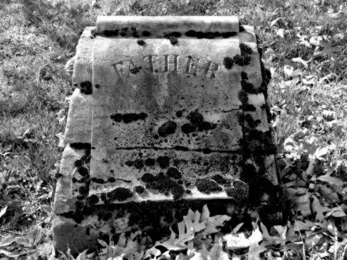 tėvas, tėtis, tėvelis, tėvas, kerpės, samanos, victorian & nbsp, era, kapinės, kapinės, kapinės, kapas, kapinės, kapinės, mirtis, miręs, laidotuves, laidotuves, akmuo, lapai, lapai, juoda & nbsp, & amp, & nbsp, balta, senas, Senovinis, lauke, kraštovaizdis, gamta, tėvo kapinės