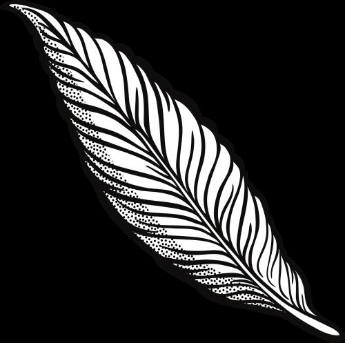 plunksna,gyvūnas,paukštis,gamta,sparnas,nemokama vektorinė grafika