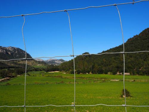 tvora,Wildzaun,laukinės gamtos tvora,Tinklelis,vielos tinklai,mazgų tinklai,miško dirvožemis,megzti akiniai,laukinių gėrybių,ganyklų tvora,galvijų tvora,avių tvora,avių tinklai,greitkelio tvora,šuo tvora,aptvertas,metalas,demarkacija,orientyro slėnis,Maljorka