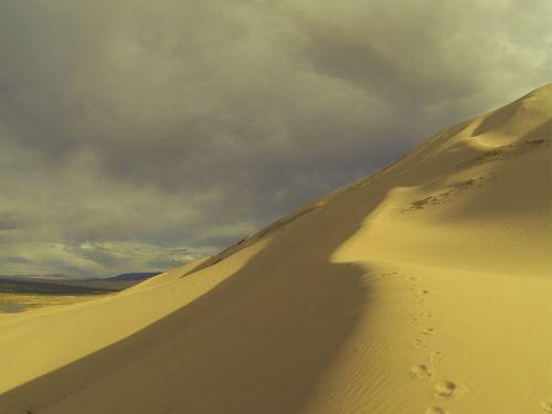Paparčiai,  Dykuma,  Priemiesčiuose,  Mongolija,  Kelionė,  Kraštovaizdis,  Gamta,  Gobi Dykuma