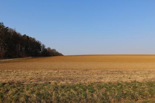 laukas,ariamasis,podirvis,kraštovaizdis