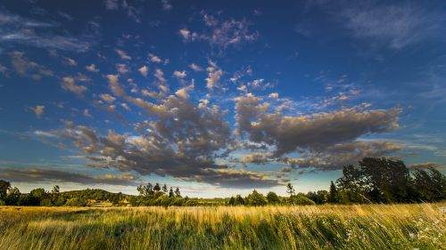 laukas,kaimas,dangus,debesys,mėlynas,gamta,vasara,kraštovaizdis,kaimas,Žemdirbystė,pieva,žalias,sezonas,Šalis,natūralus,saulėtas,vasaros kraštovaizdis,grazus krastovaizdis,ūkio kraštovaizdis,saulės šviesa,žemė,pasėlių,saulėtas dangus