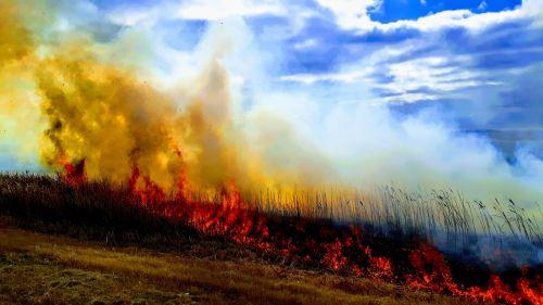 Ugnis, laukas, bushfire, Žemdirbystė, dūmai, Laukinė ugnis, lauko ugnis