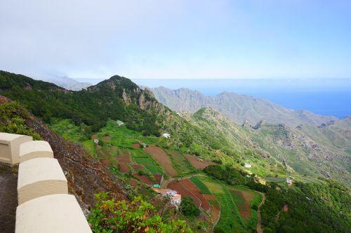 laukai,terasos,auginimas,Žemdirbystė,kalnai,požiūris,Kanarų salos,Tenerifė,añana druskos slėnio kalnai,anaga landschaftspark,parque rural de anaga,anaga,Anaga kalnai