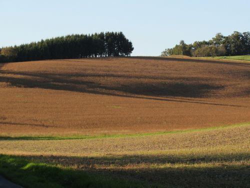 laukai,kraštovaizdis,ariamasis