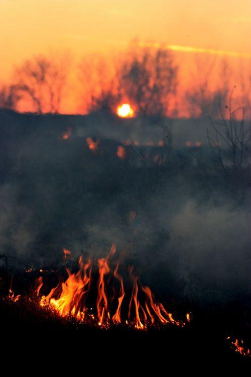 Ugnis,dūmai,saulėlydis,raudona,nelaimė,apokaliptinis,siaubas