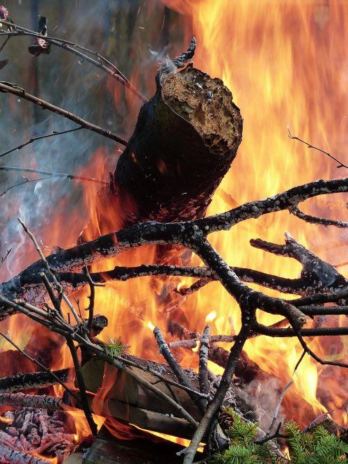 Ugnis, Liepsnos, Mediena, Miškas, Šiluma, Karštas, Pavojus, Blaze, Ugnis, Deginimas, Laukinė Ugnis, Gilus, Deginti