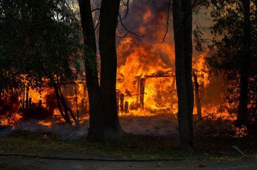 Ugnis,karštas,medžiai,deginti,troškinti,liepsna,mediena,liepsna,raudona