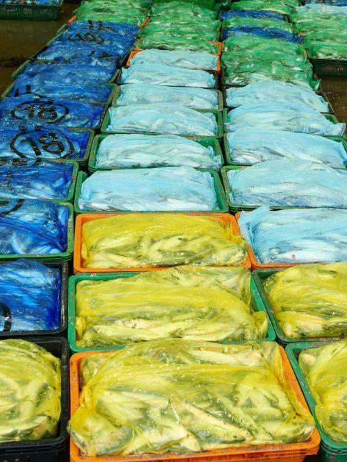 žuvis,plastmasinis,pakavimas